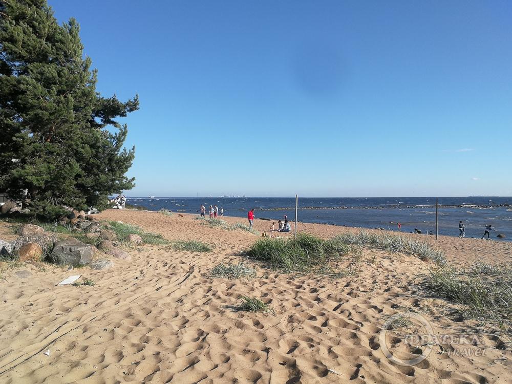 Дюны в Репино